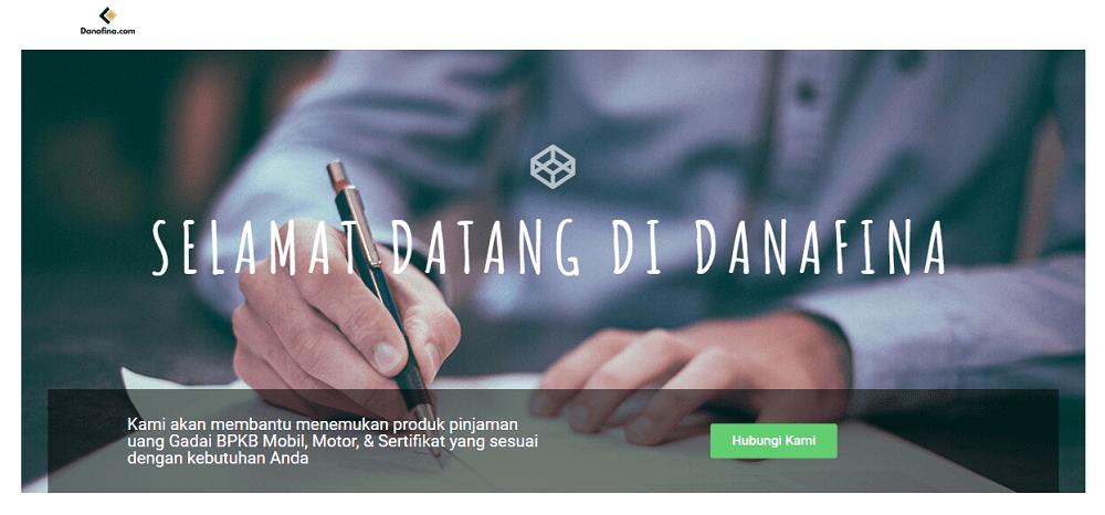 danafina.com